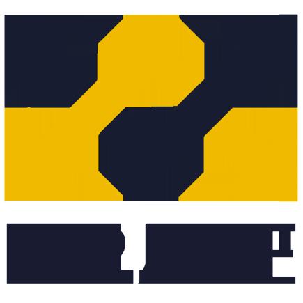 BIRAKE Masternode Gold hosting